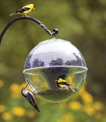 Cling-a-Wing Feeder