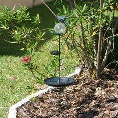 Aquarius Birdbath with Solar Stake