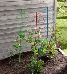 Set of 3 Colorful Spiral Plant Stakes