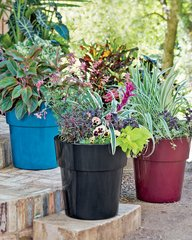 Colorfull Self-Watering Planters