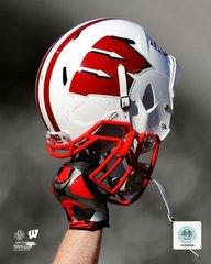 Wisconsin Badgers Helmet in Air Canvas