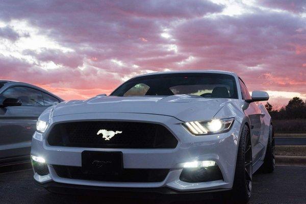 Mustang Illuminated Badge X Lume Illuminated Car Products