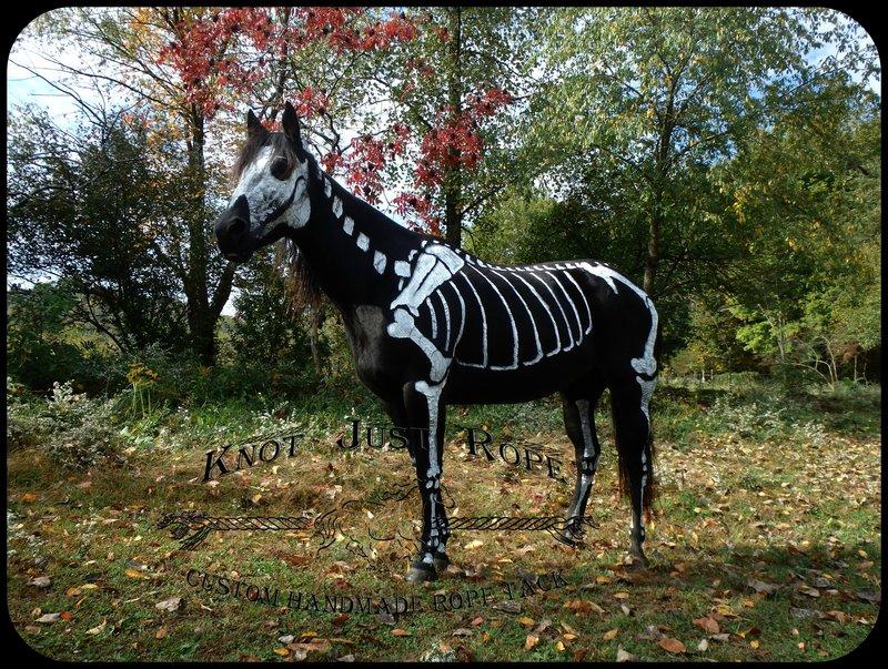 Halloween Dog Collars