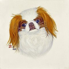 """Foxy"" ... Japanese Chin, 5 x 7 Note Cards & 8x10 Matted Print"