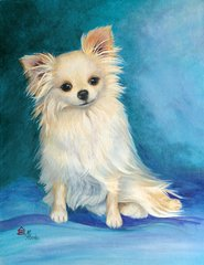 """Jazz--Memphis Style"" ... Long Coat Chihuahua, 5 x 7 Note Cards & 8x10 Paper & Canvas Prints"
