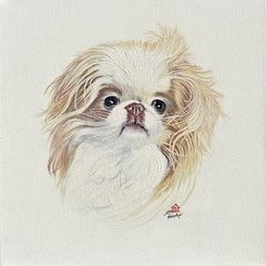 """Meeko"" ... Japanese Chin, 5 x 7 Note Cards & 8x10 Matted Print"