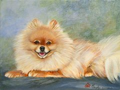 """K"" The Pomeranian (Full Body) ... 5 x 7 Note Cards, 12-Pack"