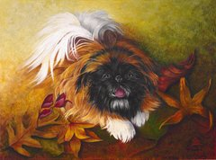 """Boogie"" ... Pekingese, 5 x 7 Note Cards & Assorted Size Paper & Canvas Prints"
