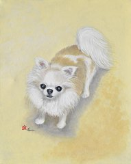 """Jewels"" ... Long Coat Chihuahuas, 5 x 7 Note Cards & 8x10 Matted Print"
