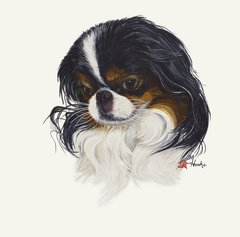 """Kiki"" ... Japanese Chin, 5 x 7 Note Cards & 8x10 Matted Print"