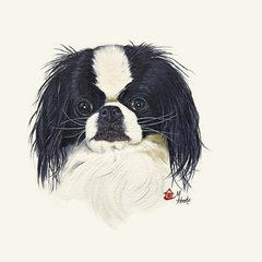 """Jack"" ... Japanese Chin, 5 x 7 Note Cards & 8x10 Matted Print"