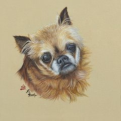 """Buddy"" ... Japanese Chin, 5x7 Note Cards & 8x10 Matted Print"