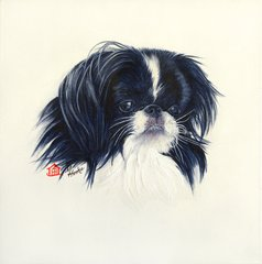 """""""Truffles"""" ... Japanese Chin, 5 x 7 Note Cards & 8x10 Matted Print"""