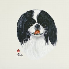 """Sparky"" ... Japanese Chin, 5 x 7 Note Cards & 8x10 Matted Print"