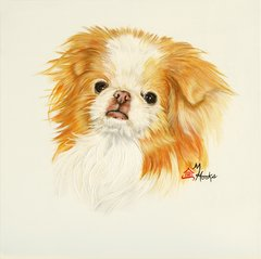 """Misaki"" ... Japanese Chin, 5 x 7 Note Cards & 8x10 Matted Print"