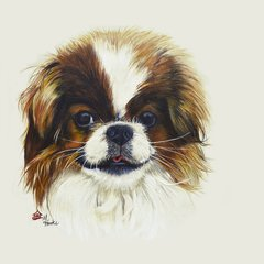 """Piper"" ... Japanese Chin, 5 x 7 Note Cards & 8x10 Matted Print"
