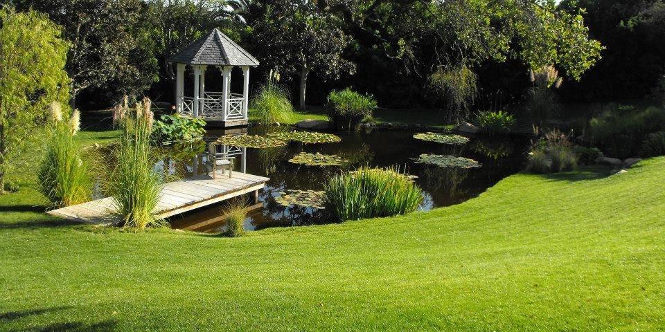 Garden Pond Supplies