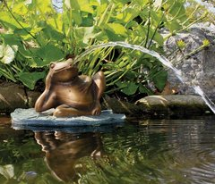 Lazy Frog on Lily Pad Spitter w/pump 78017