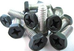 BioFalls and Skimmers Aluminum Screw Set (15)