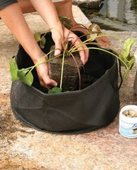 """Aquatic Plant Pot 8"""" Round x 6"""" Deep (2 pack)"""