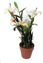 Artificial Plant 80cm Lily Bonsai