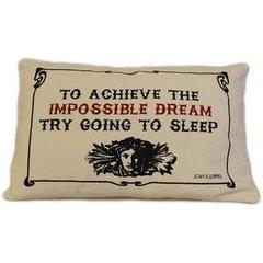 Impossible Dream Canvas Cushion