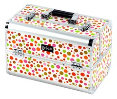Professional Designer Vanity Case Makeup Box Rainbow Polka Dot