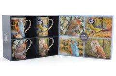Set Of 4 Birds Mugs