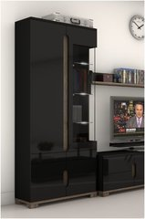 BLOSSOM Black Gloss and Glass 2 Doors Display Unit
