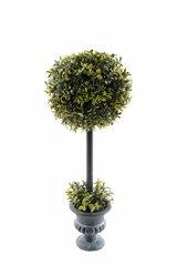 Boxwood Topiary Ball 60cm