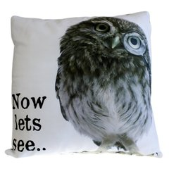 Now lets see OWL Cushion