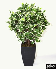 Artificial Plant 65cm Variegated Ficus Ball with Pot