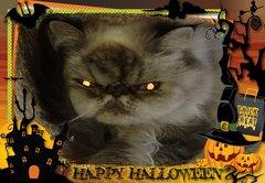 Happy. Halloween.