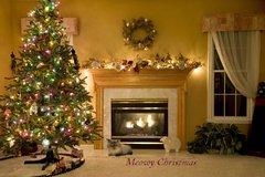 Meowy Cozy Christmas