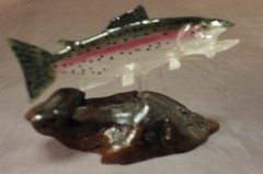 Rainbow Trout - Mounted on Wood