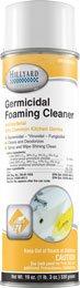 GERMICIDAL FOAMING CLEANER AEROSOL