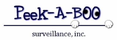 Peekaboo Surveillance, Inc.