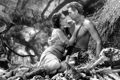 The Tarzan Old Time Radio and Movie Bundle