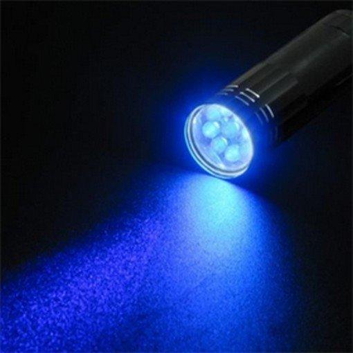 Blacklight Flashlight - Insect Finder