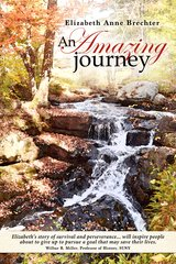 AN AMAZING JOURNEY, By Elizabeth Anne Brechter