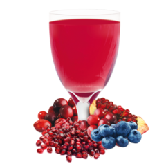 (002389) IDEAL PROTEIN _ ** EXPIRED DATE** - Blueberry and Cran-Granata Flavoured Drink Mix