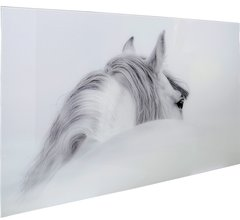 Beautiful Grey & White Horse picture with tempered glass 120x80cm