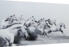 Beautiful Grey & White running Horses picture with tempered glass 120x80cm