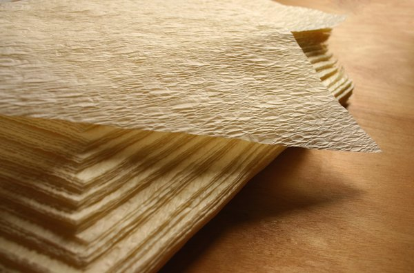 Relatively tamale wrap, textured parchment paper (corn husk hoja substitute  RE93