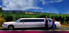 Sky Blue's Wine Cruise - 8 people 5 hr Live Music@ wineries tour $600 value