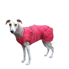 Quilted Winter Dog Coat with Tummy Panel and Turtleneck