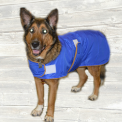 Dog Raincoat with Velcro Closures