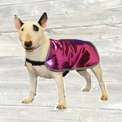 Fashion Dog Cool Coat