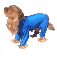 Fashion Grooming Suit