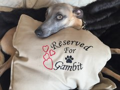 Personalised Dog Cushion Covers